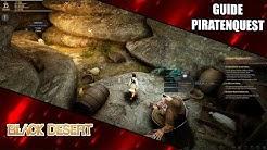 Versteckter Piratenschatz Quest - Schatzjägerquest Black Desert