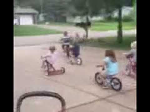 Greenwood shores biker gang