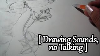 ASMR One Hour of Drawing Sounds (No Talking)