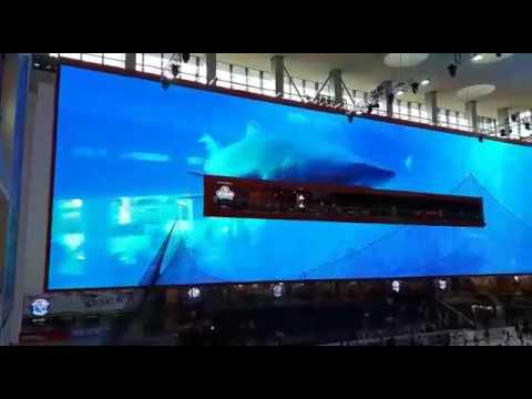 Dubai Mall (the biggest screen in the world)