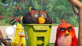 Angry Birds в кіно 2 - офіційний трейлер 1 (український)