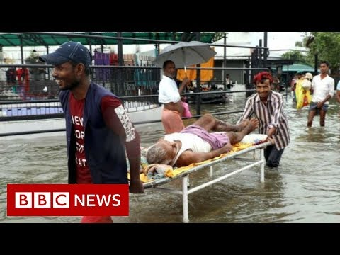 Bihar and Uttar Pradesh: Floods bring chaos - BBC News