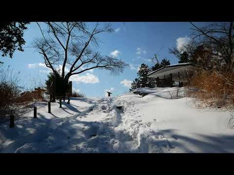 2018雪の高尾山