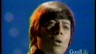 Bobby Goldsboro - The Straight Life