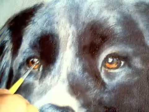 Augen Malen Hund Flv Youtube