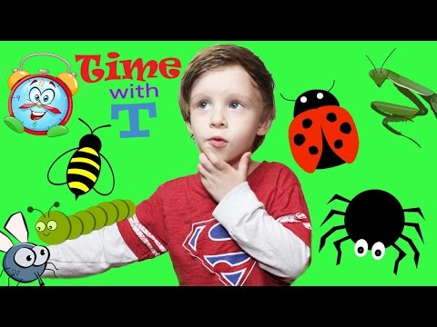 APRIL FOOL Kid Prank Mom With Toy Bugs Fly Ladybug Pray-mantis