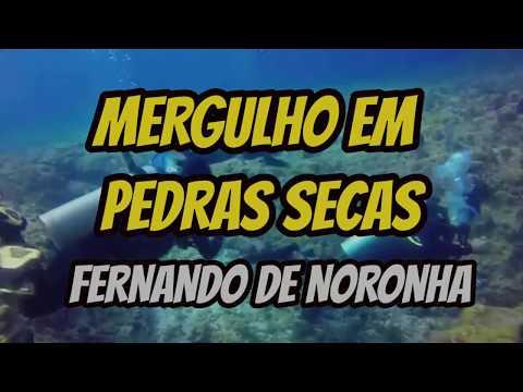 FERNANDO DE NORONHA MERGULHO EM PEDRAS SECAS