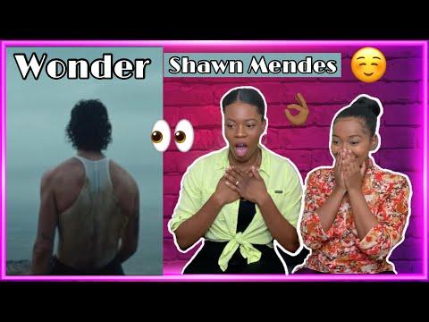 Shawn Mendes - Wonder REACTION