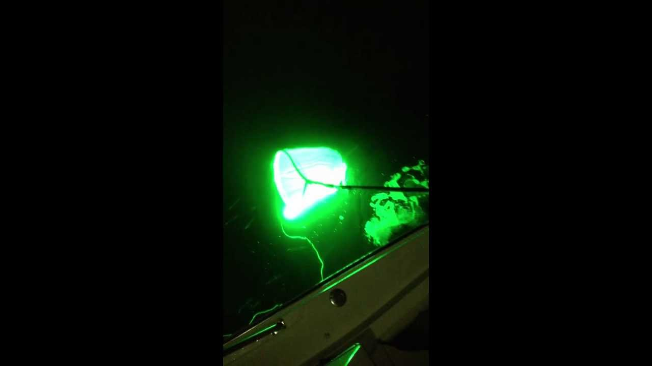 hydro glow led light inside of a net - youtube, Reel Combo