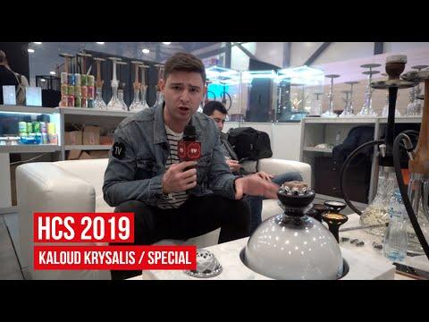 Kaloud Krysalis / Hookah Club Show 2019 / Special