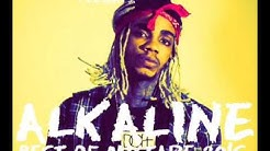 Download Alkaline Mixtape mp3 free and mp4