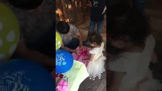 VLOG Купили волнистого попугая Сюрприз для Ами Видео для детей