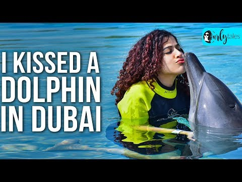 Cuddle & Swim With Dolphins At Atlantis' Aquaventure Waterpark | Curly Tales