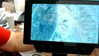 Best Microscope? My Review Of …