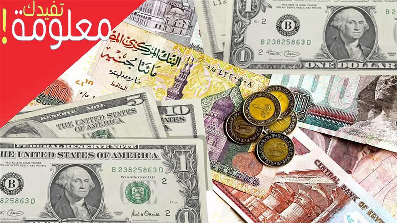 سعر الدولار اليوم الجمعة 24-2-2017 مقابل الجنية المصري في ...