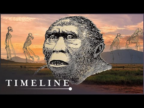 The First Human Ancestor To Stand On Two Legs | First Human | Timeline