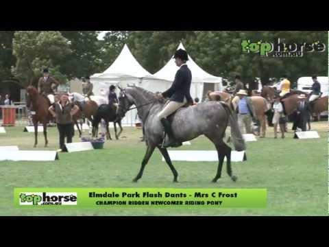 Royal Melbourne Horse Show 2013 - Ridden Newcomer Riding Pony