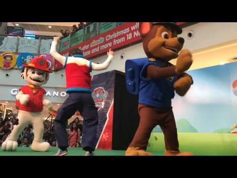 PAW PATROL MEET and GREET with Ryder, Marshall, Chase at Paw Patrol Live Show