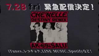 シェネル 配信限定シングル「Destiny (Remix) feat. AK-69 & SALU」絶賛...