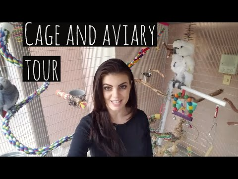 MY Parrots Outdoor Aviary Cage Tour | PARRONT TIP TUESDAY