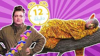نطنط وأرنوب - مجموعة حلقات متواصلة 12 | Natnat & Arnoob - Episode Compilation 12