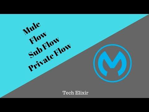 Mule ESB Tutorial | Mule Flow | Mule Sub Flow | Mule Private Flow | Tech Elixir