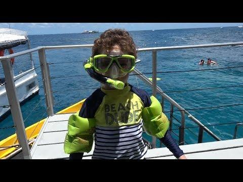 Посещаем Большой Барьерный риф. ADAM Snorkeling on the GREAT BARRIER REEF
