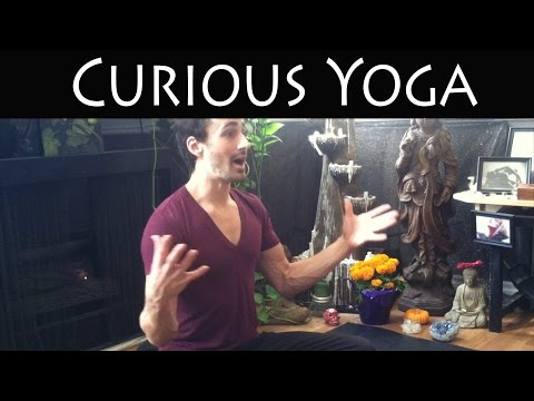 5 Day Yoga Retreat at Home! Day - 05 | Curious Yoga | Taha Yoga w/ Stephen Beitler