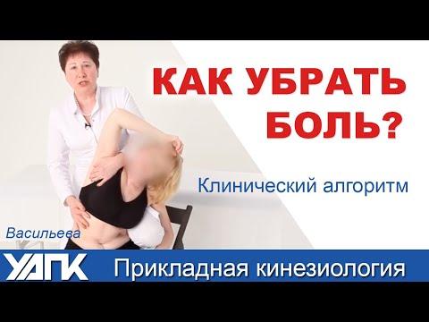 Академия прикладной кинезиологии Васильевой