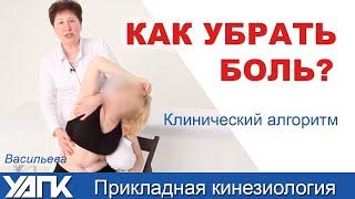 Прикладная кинезиология. Боль в шее, Васильева Л.Ф.