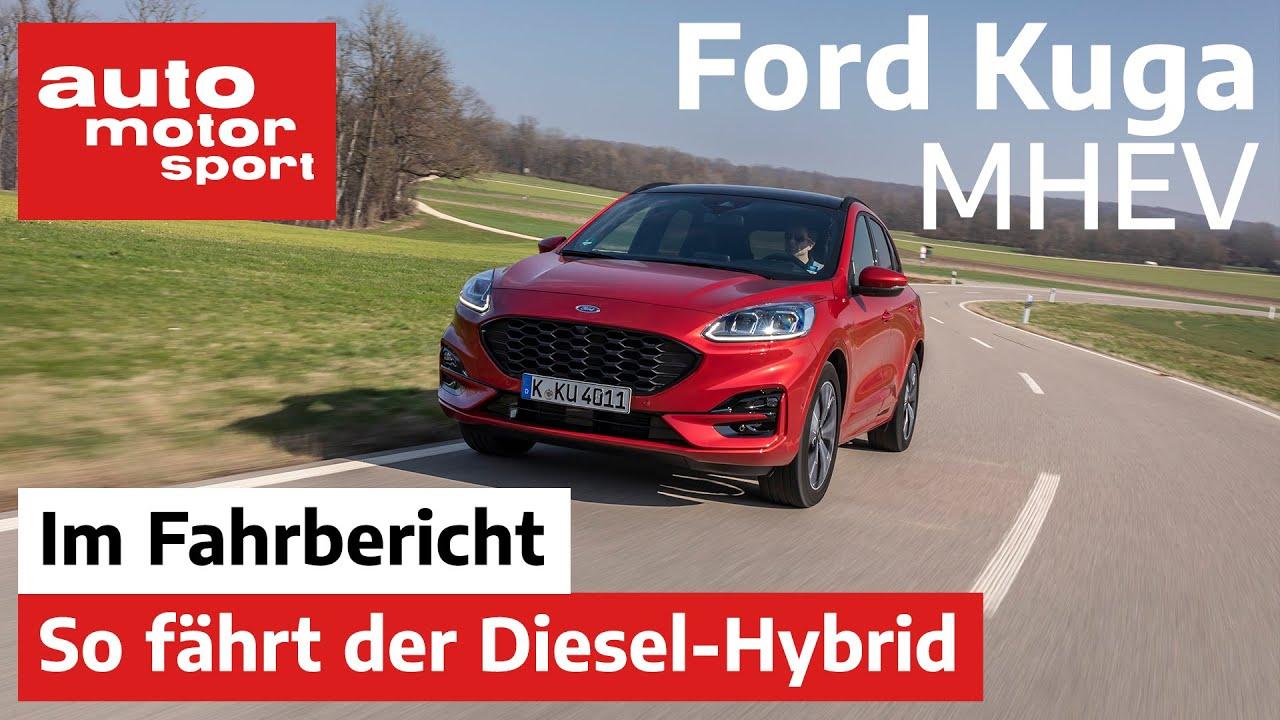 Ford Kuga 2020 Mit Hybrid Weiter Erfolgreich Fahrbericht Review Auto Motor Und Sport Youtube