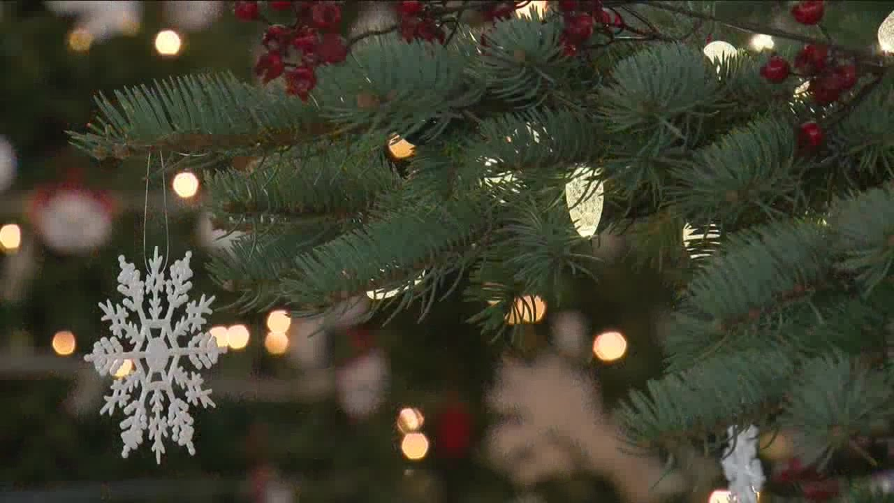 Christmas tree causing your allergies