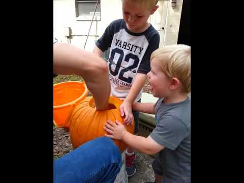 Cleaning out pumpkin guts