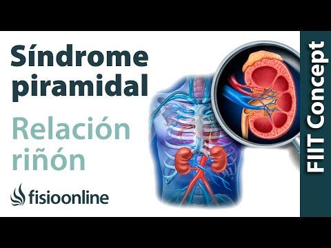 Superior abdomen inferior dolor derecho muslo