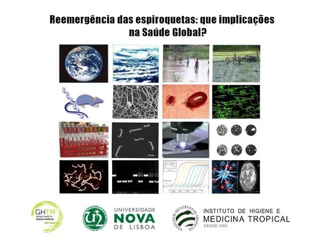 Reemergência das espiroquetas: que implicações na Saúde Global?