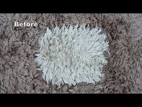 Cleaning Cat's Urine !!! How To Clean a Carpet Dirtied with Cat's Urine *YELLOW WATER*