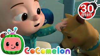My Dog Song (Bingo) + More @Cocomelon - Nursery Rhymes