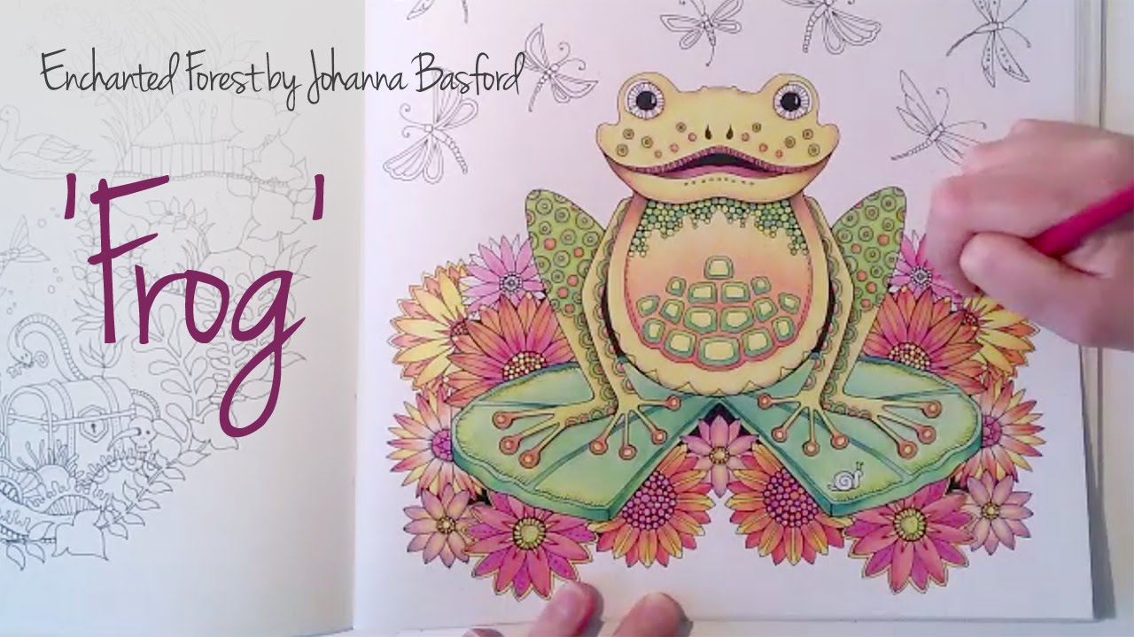 Enchanted Forest Johanna Basford Coloring Book