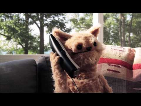 This Cat is NED   EP39   Ned vs Phone Scams