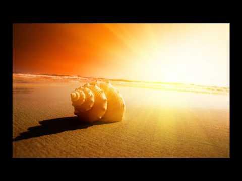 Tiesto - Nyana (Yuri Yavorovskiy Ambient Remix)