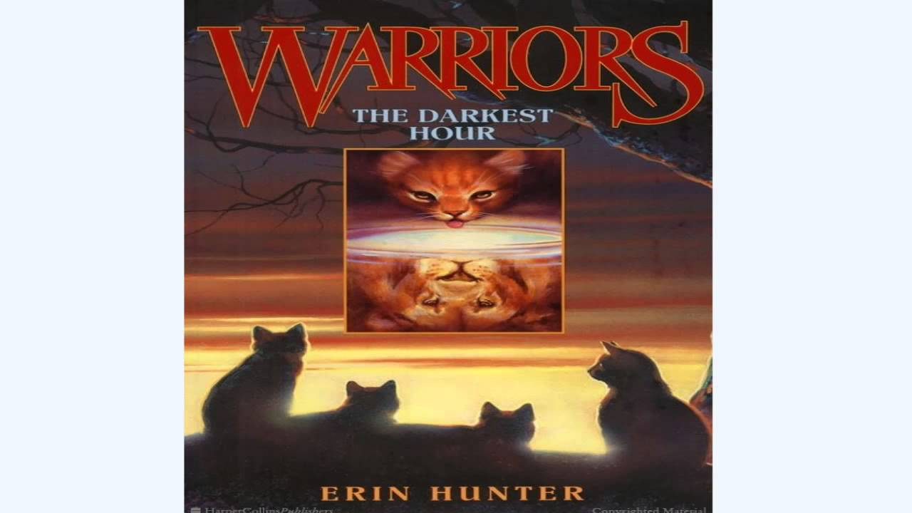 My Experience  Warriors: The Darkest Hour