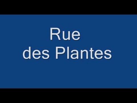 Rue des Plantes Paris Arrondissement  14e