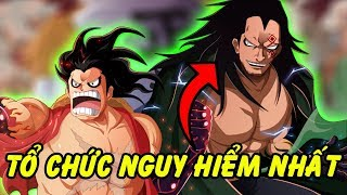 Top 10 Những Tổ Chức Nguy Hiểm Nhất Trong One Piece
