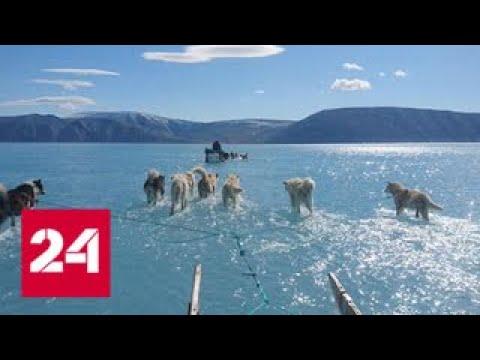 Смотреть Знамение глобального катаклизма: фото из Гренландии взволновало ученых - Россия 24 онлайн
