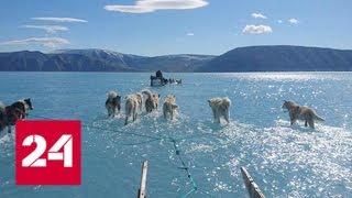 Знамение глобального катаклизма: фото из Гренландии взволновало ученых - Россия 24