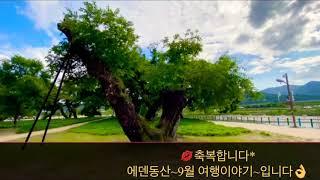 ❤️#9월의 여행지~#성주*#성밖숲~~오래된 숲길과 #…