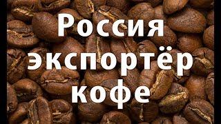 Россия на рынке кофе. Кофейный бизнес в Крыму