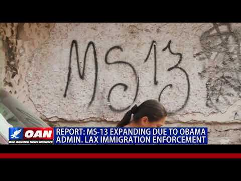 MS-13 Expanding Due to Obama Admin. Lax Immigration Enforcement