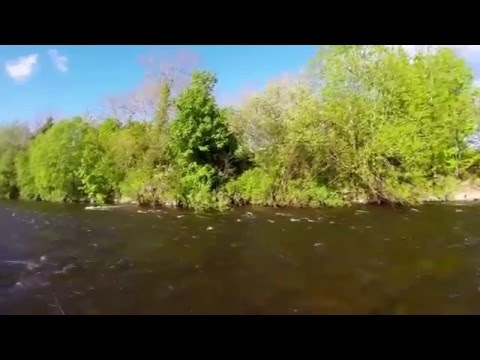 Nymph Fishing For Brown Trout On The River Usk