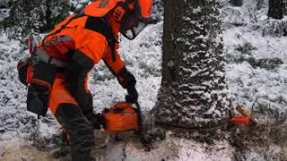 60 Years of Chainsaws – Husqvarna 65